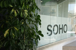 a plant and the LOGO from SOHO office